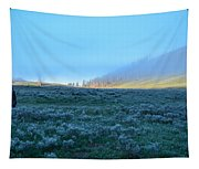 Yellowstone Morning Tapestry