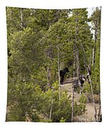 Yellowstone Wolves Tapestry