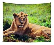 Young Adult Male Lion On Savanna. Safari In Serengeti. Tanzania Tapestry