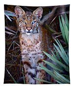 Young Bobcat Tapestry