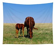 Young Colt And Mother Tapestry