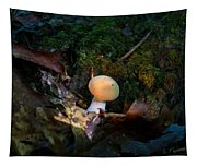 Young Lonely Mushroom 2 Tapestry