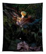 Young Lonely Mushroom Tapestry