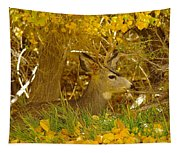 Young Male Buck Tapestry