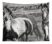 Young Stallions Tapestry