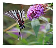 Zebra Swallowtail Butterfly On Butterfly Bush  Tapestry