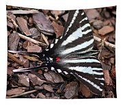Zebra Swallowtail Butterfly Square Tapestry