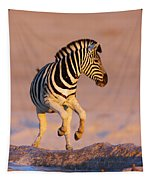 Zebras Jump From Waterhole Tapestry