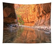 Zion Narrows Bend Tapestry