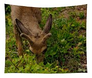 A Young Buck Grazing Tapestry