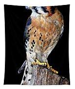 American Kestrel Tapestry