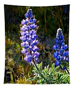 Back Lit Lupine Tapestry