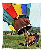 Balloonist - Ready For Takeoff Tapestry