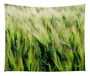 Barley, Co Down Tapestry