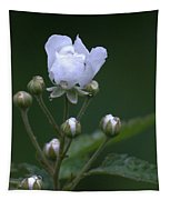 Blackberry Vine Flower Tapestry