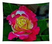 Blushing Rose Tapestry