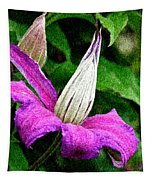 Clematis Tapestry