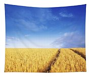 Co Carlow, Ireland Barley Tapestry