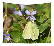 Common Brimstone  Tapestry