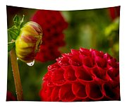 Dahlia Bud With Dew Tapestry
