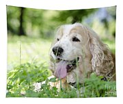 Dog On The Green Grass Tapestry