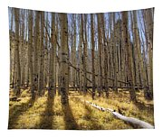 Fall On The Mountain  Tapestry