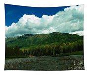 Fernie British Columbia  Tapestry