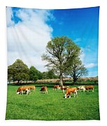 Hereford Bullocks Tapestry