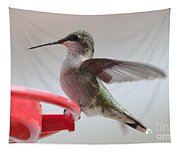 Hummingbird With Wings Back Tapestry