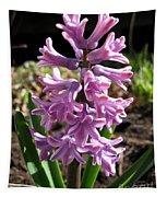 Hyacinth Named Splendid Cornelia Tapestry