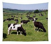 Ireland Friesian Cattle Tapestry