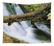 Ireland Waterfall Tapestry