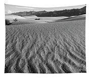 Mesquite Dunes 15 Tapestry