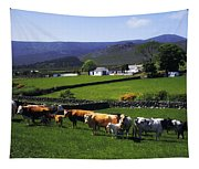 Mourne Mountains, Co Down, Ireland Tapestry