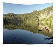 Mowich Lake Tapestry