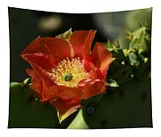 Orange Prickly Pear Blossom  Tapestry