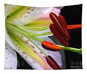 Oriental Lily Hybrid Named Mojave Tapestry