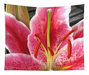 Oriental Lily Named La Mancha Tapestry