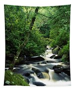 Owengarriff River, Killarney National Tapestry