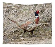Pheasant Walking Tapestry