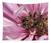 Pink Anemone From The St Brigid Mix Tapestry