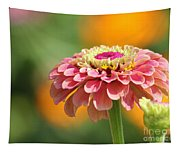 Pink Zinnia Tapestry