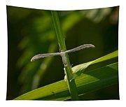 Plume Moth Tapestry