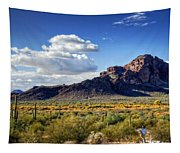 Red Mountain  Tapestry