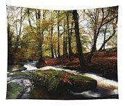 Sally Gap, County Wicklow, Ireland Tapestry