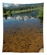 Shallow Water Reflections Tapestry