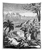 Sieur De La Salle Tapestry