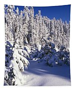 Snow-covered Pine Trees On Mount Hood Tapestry