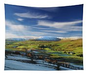 Sperrin Mountains, Co Tyrone, Ireland Tapestry