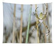 Spider Tapestry